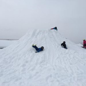 snebjerg