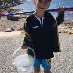 Valdemar med krabberne